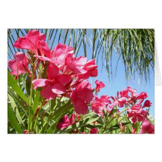 Blooming Oleander Greeting Card