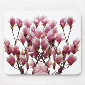 Blooming Pink Magnolias Spring Flower Mouse Pad