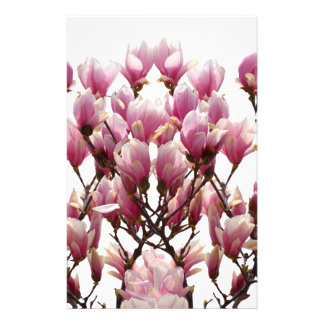 Blooming Pink Magnolias Spring Flower Stationery