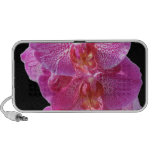 Blooming Pink Orchids Portable Speakers