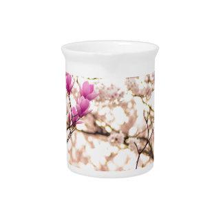 Blooming Pink Purple Magnolias Spring Flower Drink Pitcher