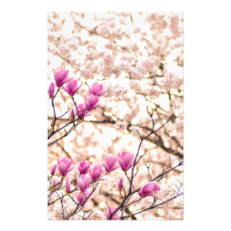 Blooming Pink Purple Magnolias Spring Flower Stationery