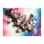 Blooming plum canvas prints