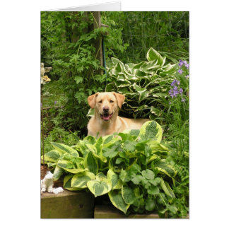 Blooming Puppies Greeting Card