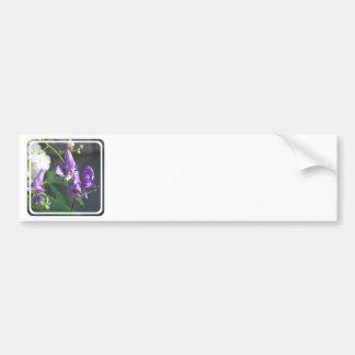 Blooming Purple Delphinium Bumper Sticker