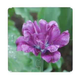Blooming Purple Parrot Tulip Puzzle Coaster