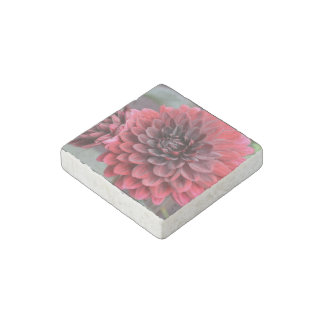 Blooming Red Dahlias Stone Magnet