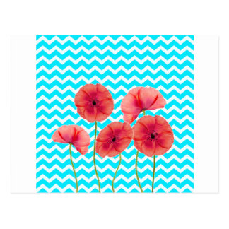 Blooming red poppies blue chevron pattern postcard