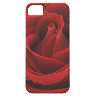 Blooming Red Rose iPhone SE/5/5s Case