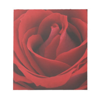 Blooming Red Rose Notepad