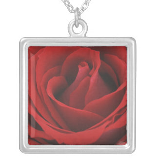 Blooming Red Rose Silver Plated Necklace