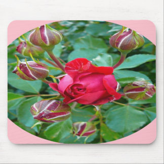 Blooming Red Roses Mouse Pad