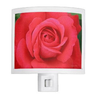 Blooming Romantic Red Rose Nightlight