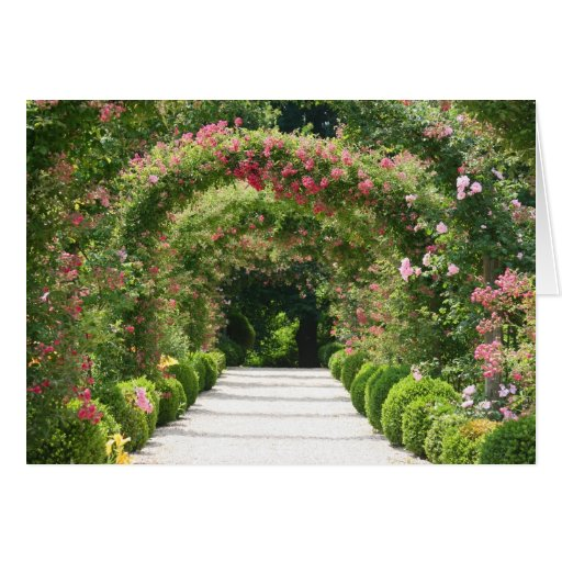 Blooming Rose Arch In the Garden Greeting Card