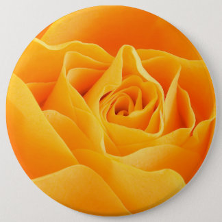 Blooming Rose Flower, Petals - Yellow Button