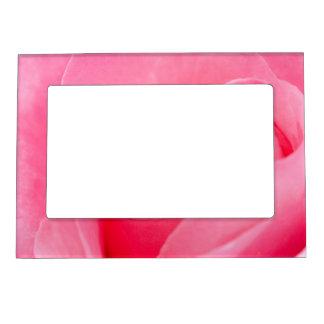 Blooming Rose Magnetic Frame