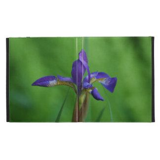 Blooming Siberian Iris iPad Cases