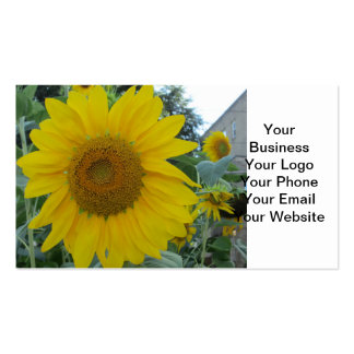 Blooming Sunflower Business Card