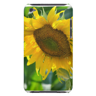 Blooming Sunflower iTouch Case Barely There iPod Cover