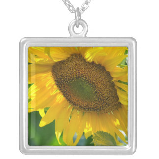 Blooming Sunflower Necklace