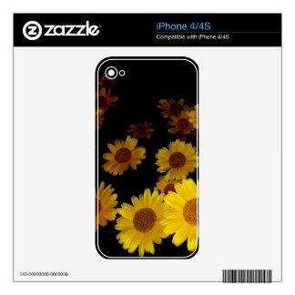 Blooming Sunflowers Decal For iPhone 4S