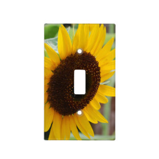 Blooming Sunflowers Light Switch Cover