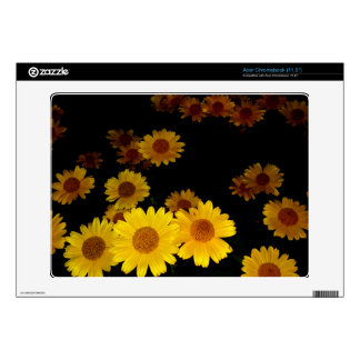 Blooming Sunflowers Skin For Acer Chromebook