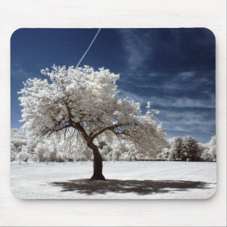 Blooming Tree in Infrared at NJ Botanical Gardens Mouse Pad