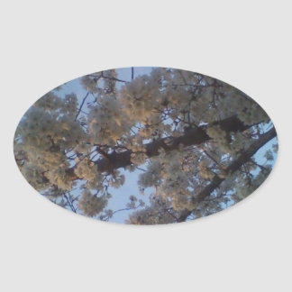 Blooming Tree Oval Sticker