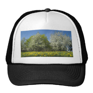 Blooming Trees and Dandelions in the Meadow Trucker Hat