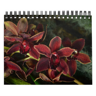 Blooming tropical orchid flowers 2015 calendar