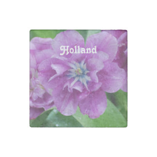 Blooming Tulips in Holland Stone Magnet