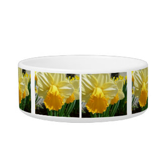 Blooming Yellow Fluer  cat Bowl