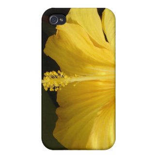 Blooming Yellow Hibiscus iPhone 4 Case