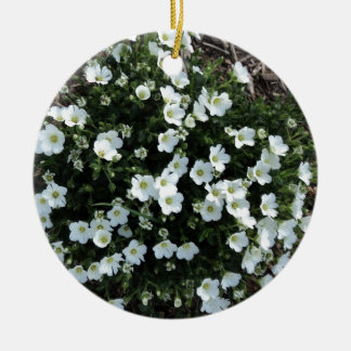 Blooms Ceramic Ornament