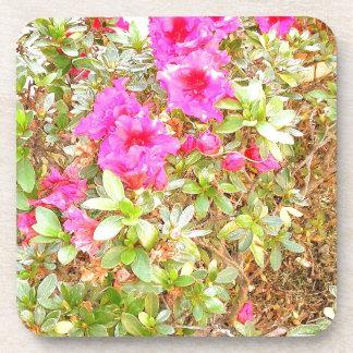 Blooms Coasters