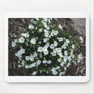 Blooms Mouse Pad