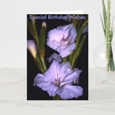 blooms, Special Birthday Wishes Cards from Zazzle.com