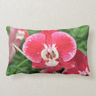 Bloosom rojo de la orquídea almohada