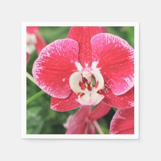Bloosom rojo de la orquídea servilletas desechables