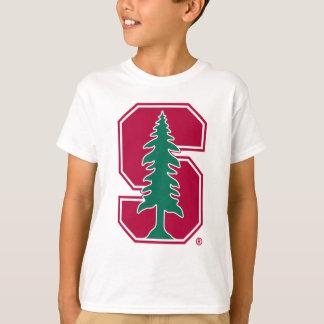 """Bloque cardinal """"S"""" con el árbol Playera"""