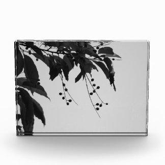 Bloque de acrílico decorativo de las cerezas salva
