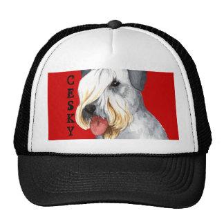 Bloque del color de Cesky Terrier Gorra