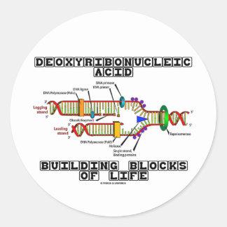 Bloques huecos del ácido desoxirribonucléico de la pegatina redonda