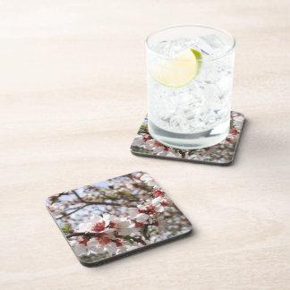 Blossom Coasters