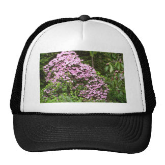 Blossom-covered Pink Shrub flowers Hats
