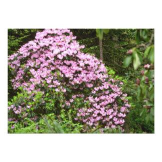 Blossom-covered Pink Shrub flowers Custom Invites