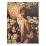 Blossom Fairy Post Cards