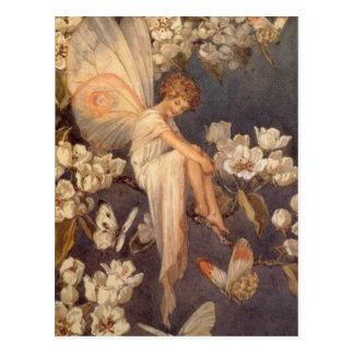 Blossom Fairy Postcard