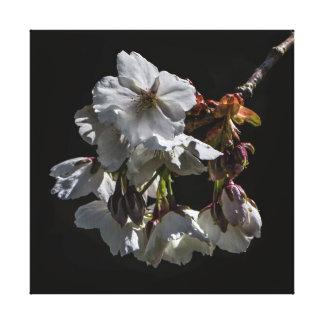Blossom Flowers Canvas Print